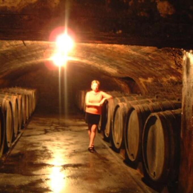 【第98回世界の酒とチーズフェスティバル】バッハトキオ〈Dr.フィッシャー醸造所〉
