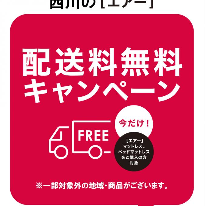 〈西川〉🌟[エアー]配送料無料キャンペーン開催中🌟